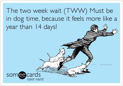 dogtime2ww